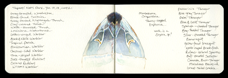 Sketchbook_2012_05